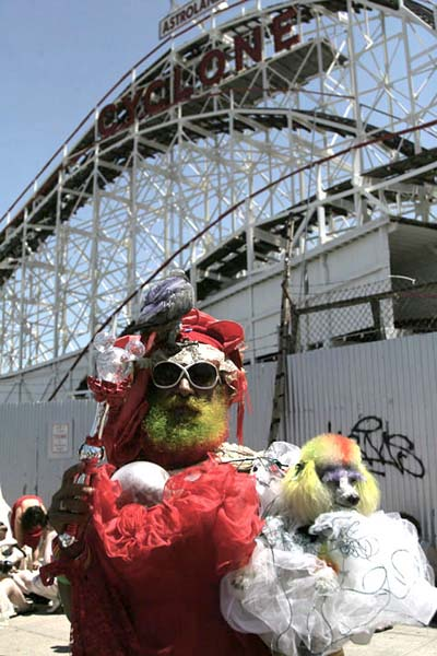 Painted Poodle & Pal    -  Coney Island - Photography by Katherine Keck